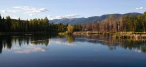 463 Tamarack Creek Road, Whitefish, MT 59937