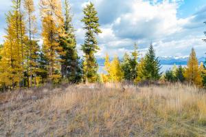 60 Hyden Ridge Road, Lakeside, MT 59922