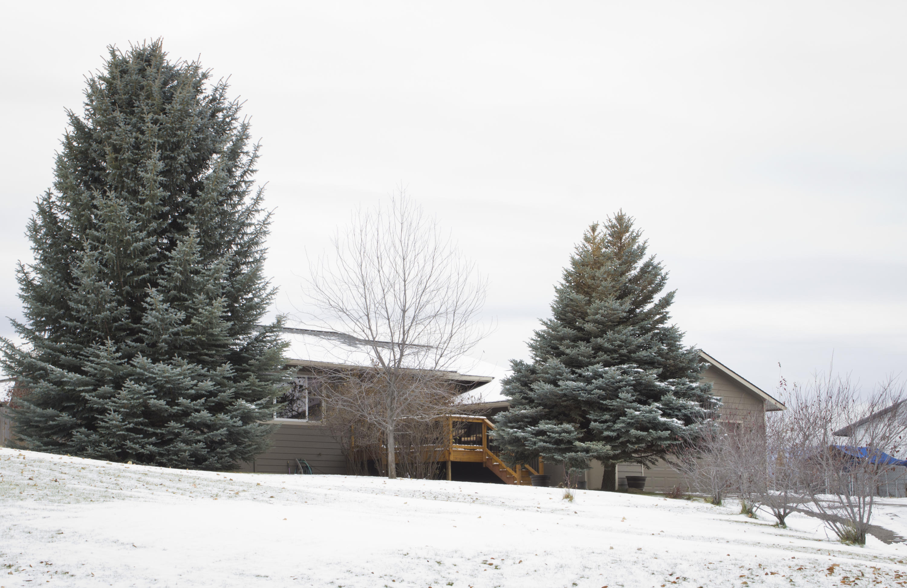 Property Image #12 for MLS #21917749