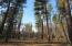 250 Sunburst Drive, Bigfork, MT 59911