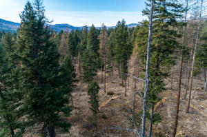 Nhn Leaning Larch Lane, Kalispell, MT 59901