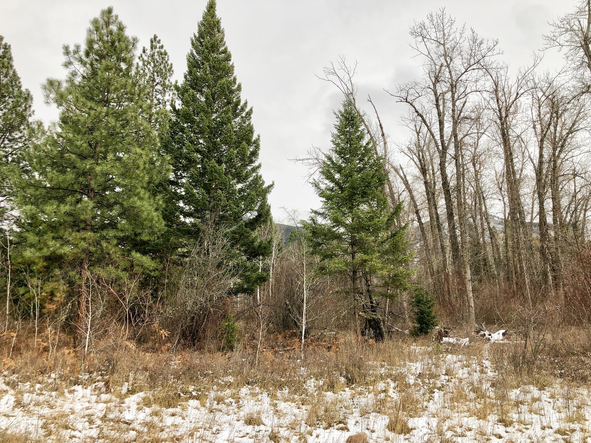 Property Image #1 for MLS #21918705