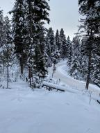 1501 Double Arrow Road, Seeley Lake, MT 59868