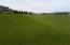 Taken when the grass is green!