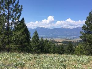 Tbd 8 Mile Creek Road, Florence, MT 59833