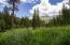 3897 Petty Creek Road, Alberton, MT 59820