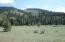 4953 Joslin Trail, Darby, MT 59829