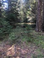 990 Five Deer Lane, Bigfork, MT 59911