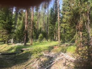 Nhn Outback Trail, Alberton, MT 59820