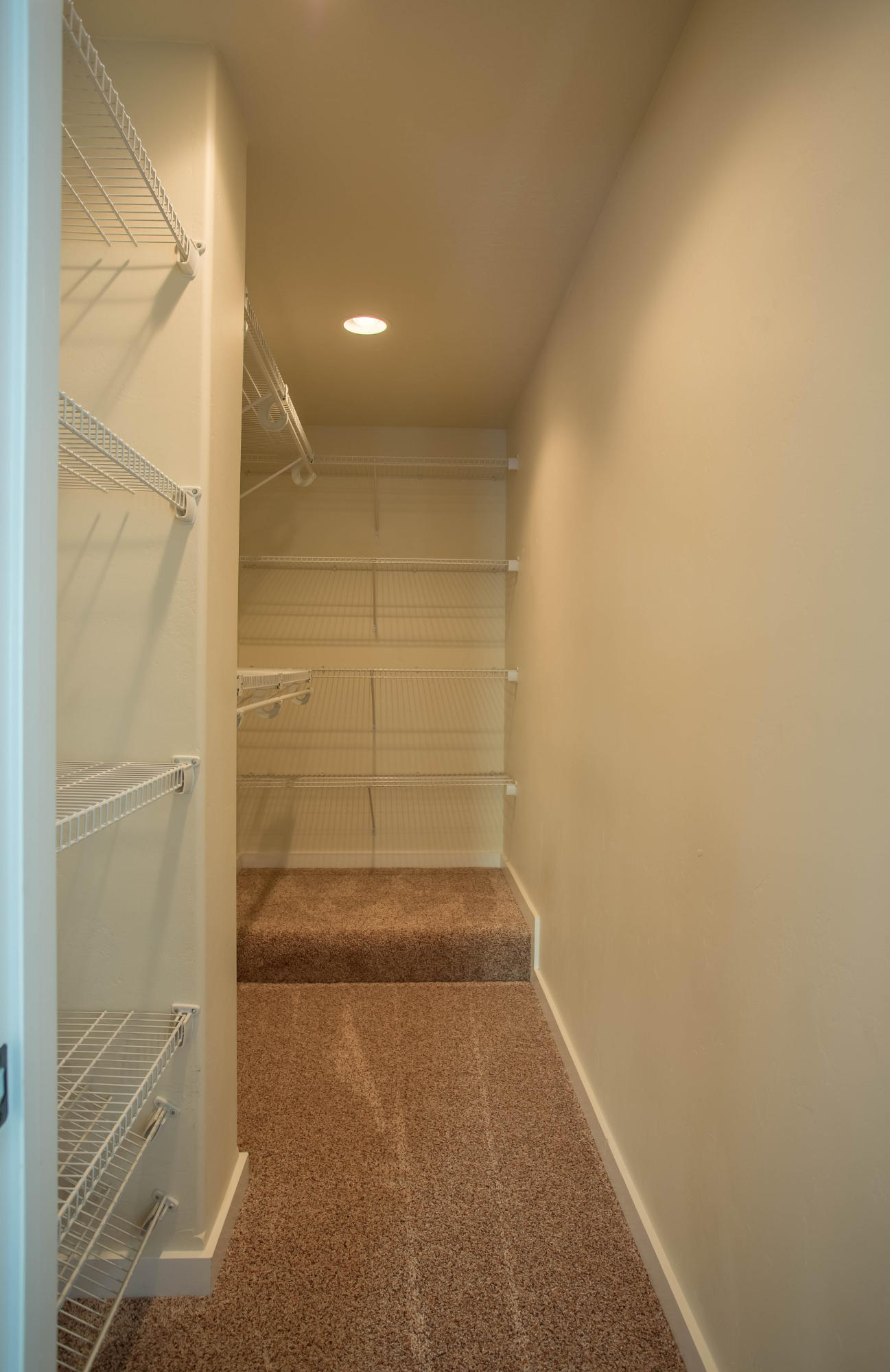 Property Image #3 for MLS #22007249