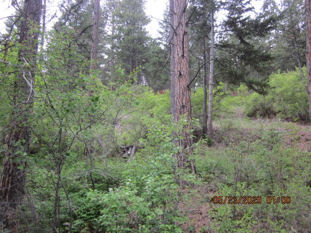 Property Image #20 for MLS #22007198