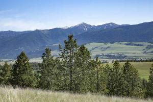 Nhn Valley View Loop, Eureka, MT 59917