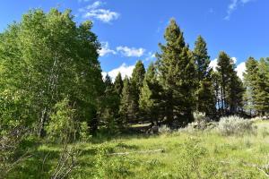 22 Blue Mountain View, Boulder, MT 59632