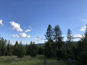 925 Copper Road, Kalispell, MT 59901