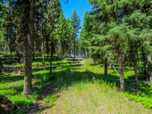351 Bobcat Lane, Seeley Lake, MT 59868