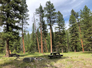 Lot 62 Idle Ranches, Clinton, Montana 59825