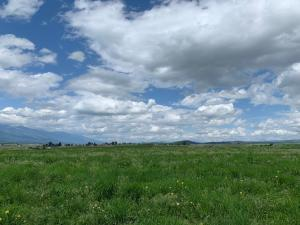 Nhn Thousand Acre Road, Corvallis, MT 59828