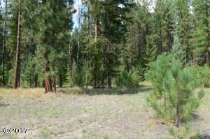 Nhn Florence Road, Libby, MT 59923