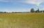 Northeastern view over upper pasture.