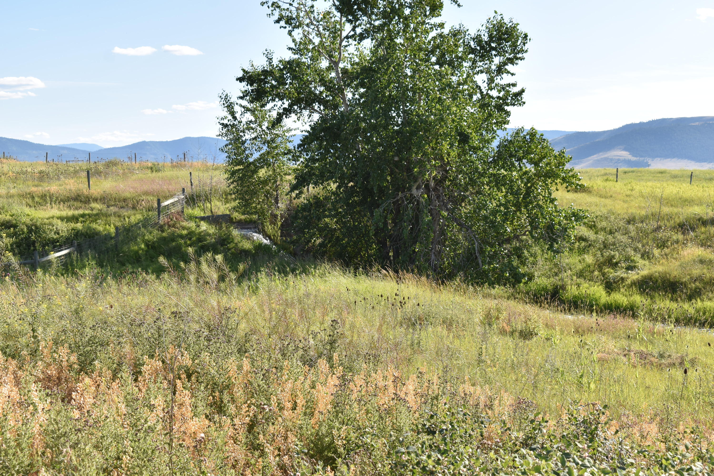 Property Image #15 for MLS #22010616