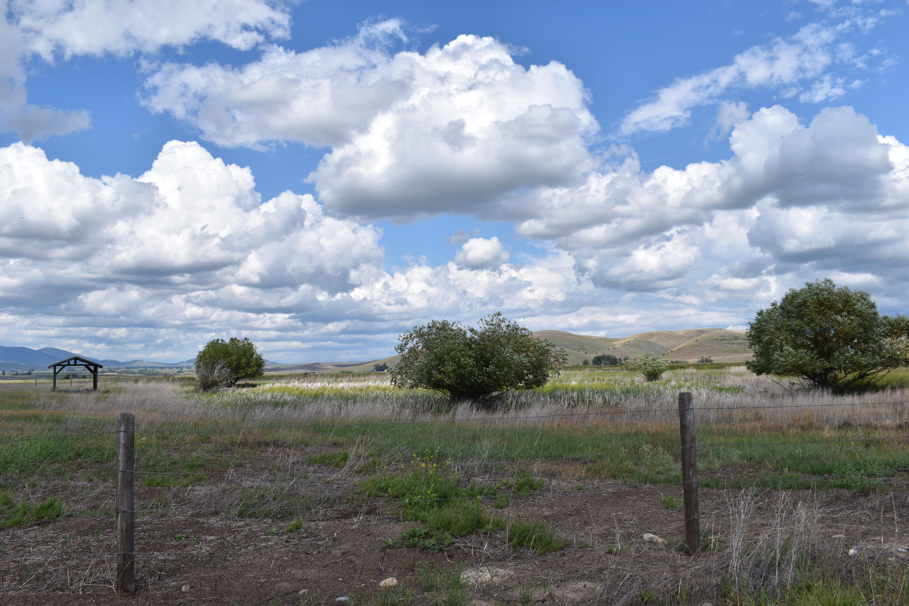 Property Image #5 for MLS #22010616