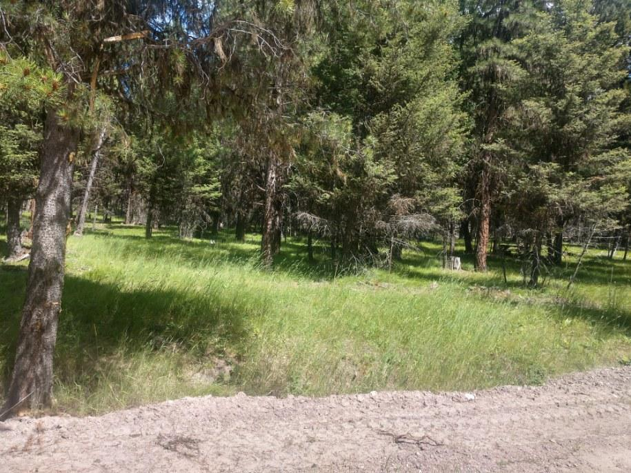 Property Image #2 for MLS #22011586