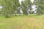 Mix of Trees and Meadow/ Pasture