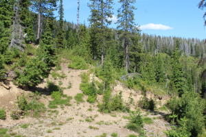 19a (2) Old Yellowstone Trail, Saltese, MT 59867