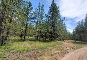 Nhn Badger Hollow Trail, Marion, MT 59925