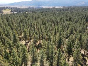Lot 51a Elk Meadows, Huson, MT 59846