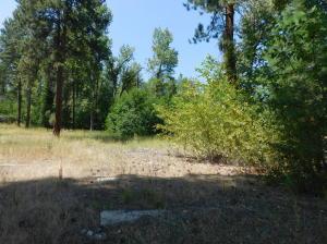 Nhn Pine Meadows, Hamilton, MT 59840