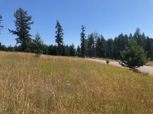 220 Spurwing Loop, Lakeside, MT 59922