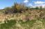 Nhn Stacy Lane, Hamilton, MT 59840