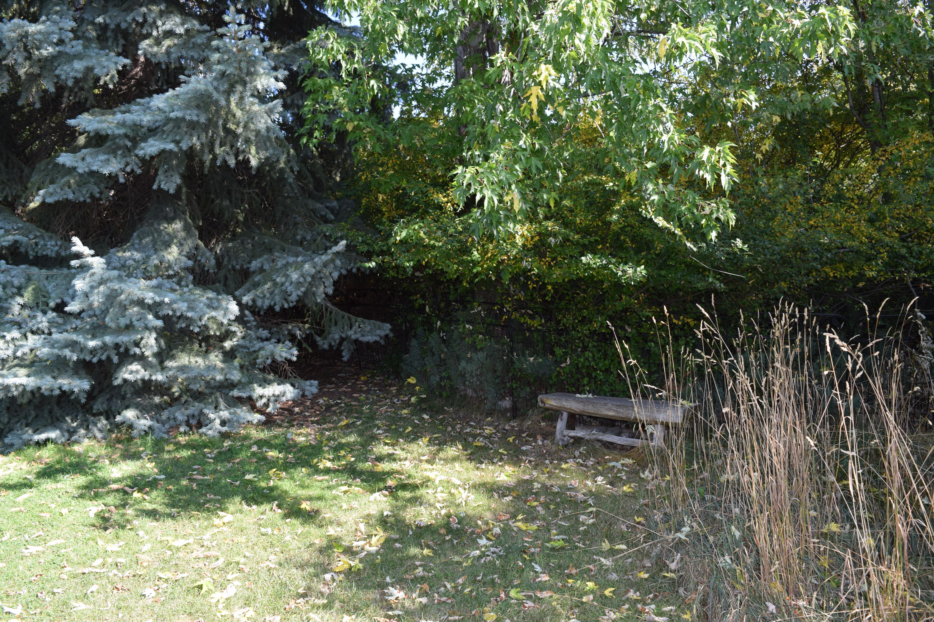 Property Image #14 for MLS #22015384