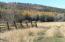 6230 Hwy 2 West, Kila, MT 59920