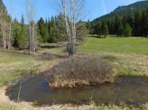 7 Mile Ranch, Saint Regis, MT 59866