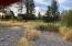 Looking Back at House: Perspective from Trail Creek (fall flow)