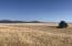 Lot 1 Ridge Road, Phase 1, Philipsburg, MT 59858