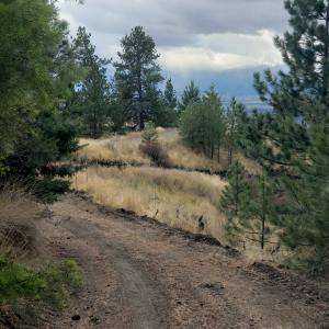 Lot 52&53 Copper Ridge Road, Florence, MT 59833