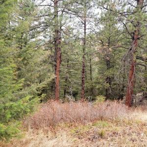 Lot 47 Copper Ridge Trail, Florence, MT 59833