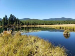 15337 Wolf Creek Road, Libby, MT 59923