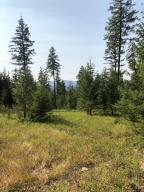 Mountain views through the trees