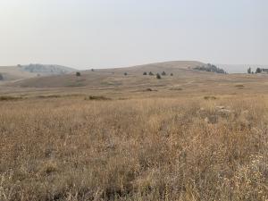 19.22 acres off of Gentry Way