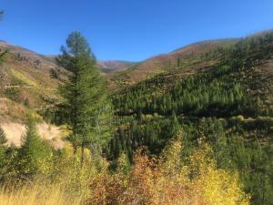 Tbd Eight Mile Creek Road, Unit 1, Florence, MT 59833