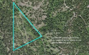 Nhn Lot 10 Copper Ridge Trail, Florence, MT 59833