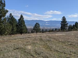 590 Hillside Ranch Road, Victor, MT 59875