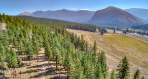 Lot 3 Us Hwy 10, Alberton, MT 59820