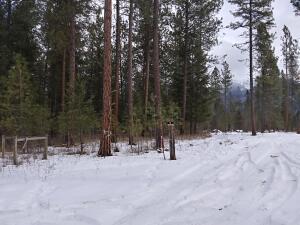 Nhn Hillside, Charlo, Montana