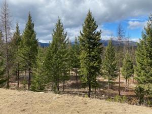 Lot 1 Annerly Ferry Road, Rexford, MT 59930
