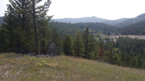 Tract A Gong Road, Philipsburg, MT 59858